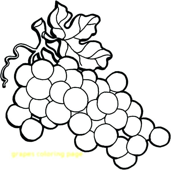 Fresh Coloring Pages Grapes Free 2020 Grape Drawing Coloring