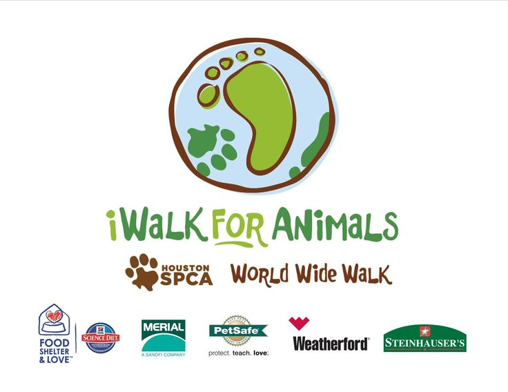 Step up, step out and join the Houston SPCA for our fourth annual iWalk on Sunday, Nov. 9th. Participate on your own – or as part of a team - and help give thousands of orphaned, abused and neglected animals a second chance at life!  http://www.iwalkforanimals.org