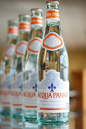 i know bottled water is bad for the environment but i love acqua panna. :3