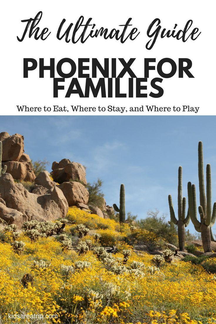 Best family activities in phoenix