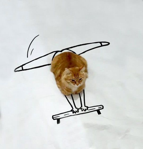 Amazing how imaginative people are when it comes to doodling over a cat