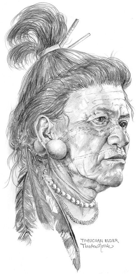 Timucuan Elder. (Timucua Tribe of Florida). Florida Lost Tribes Art Project by Theodore Morris