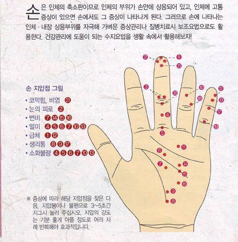 내손안에 의사있다? 손지압 건강법 :: 세아향