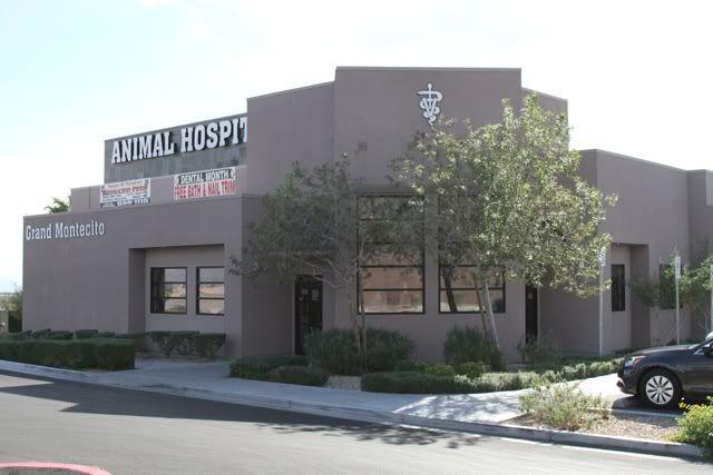 Grand Montecito Animal Hospital, Las Vegas NV