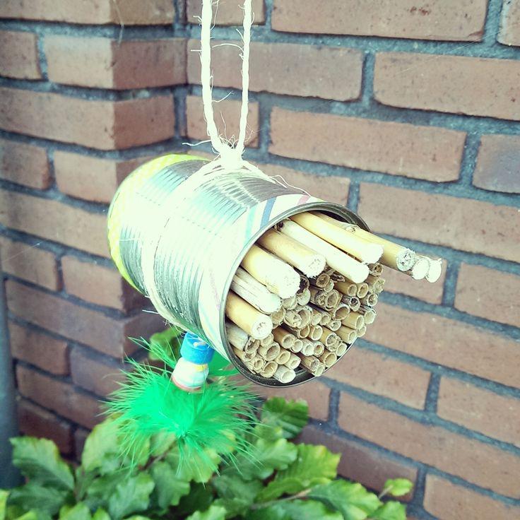 Op het manana manana festival kun je ook een eigen bijenhotelletje maken van een conservenblikje en holle stokjes. Hang hem op een zonnige plek in de buurt van bloeiende planten en de bijen zijn je dankbaar