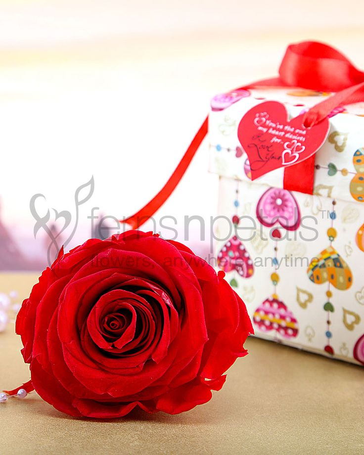 Gift Forever #RedRose on this Valentine Day, which is preserved to last forever, just like your love.