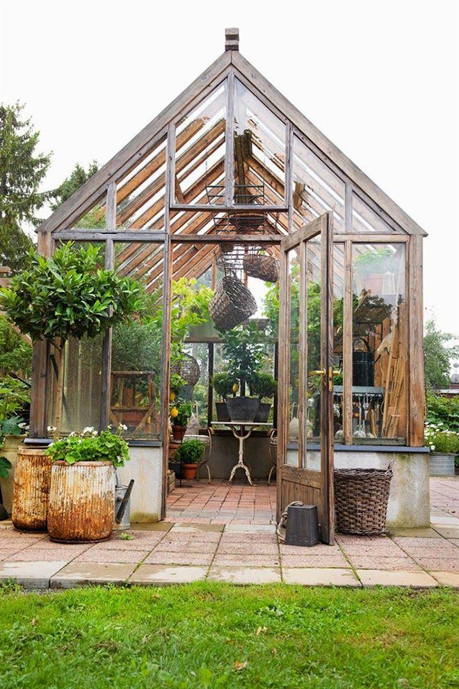 Las 25 mejores ideas sobre cobertizos para macetas en for Casas con cobertizos