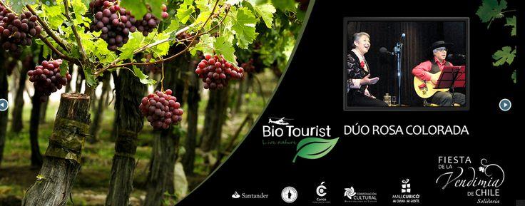 BioTourist  - Festival de la Vendimia de Curicó