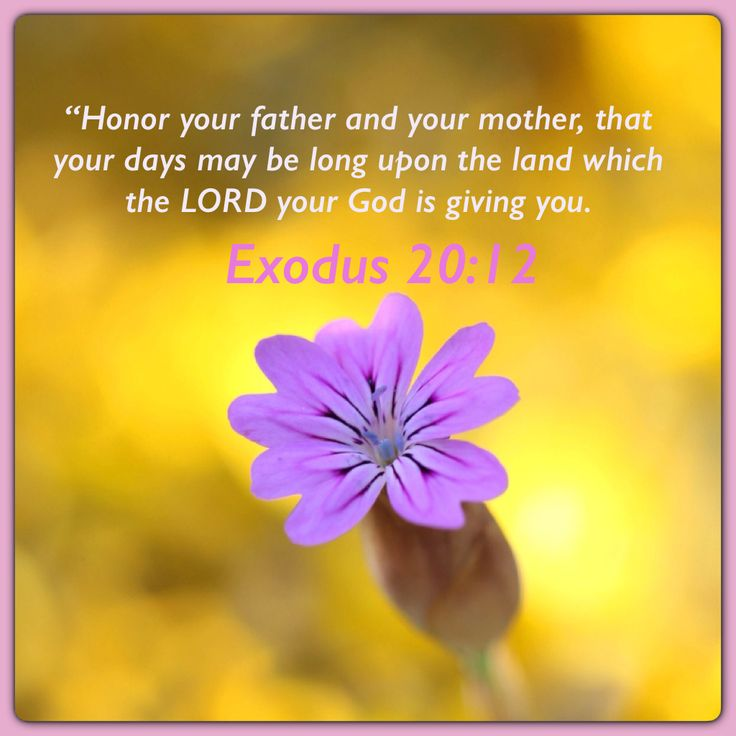 Explain the role of the law in our salvation. Exodus 20:2.....; sanctuary and its services and purpose.?