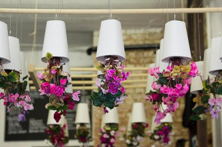 macetas colgantes sky planter de boskke en disposicin geomtrica nos encanta jardin pinterest planters sky and pots