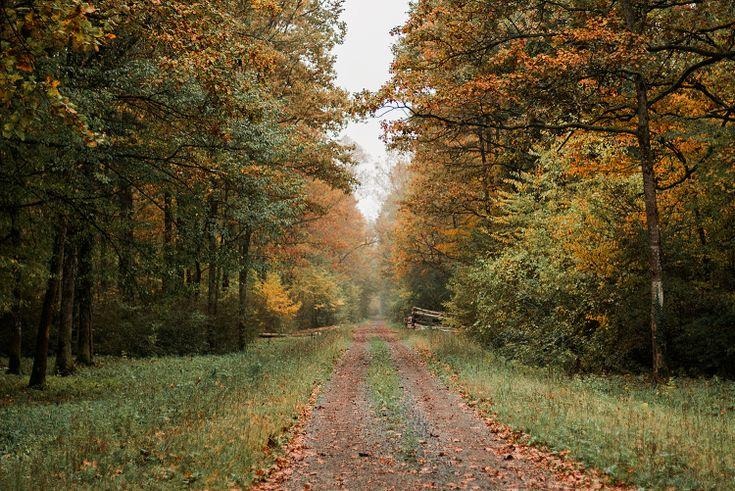 ines-perkovic-autumn-02
