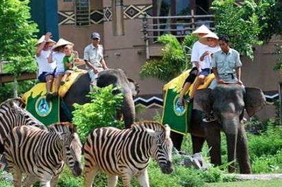 Bali Safari and Marine Park is a zoo in Bali with the most comprehensive collection of hundreds of animals of 50 species, including the endangered animals endangered #tripsbali