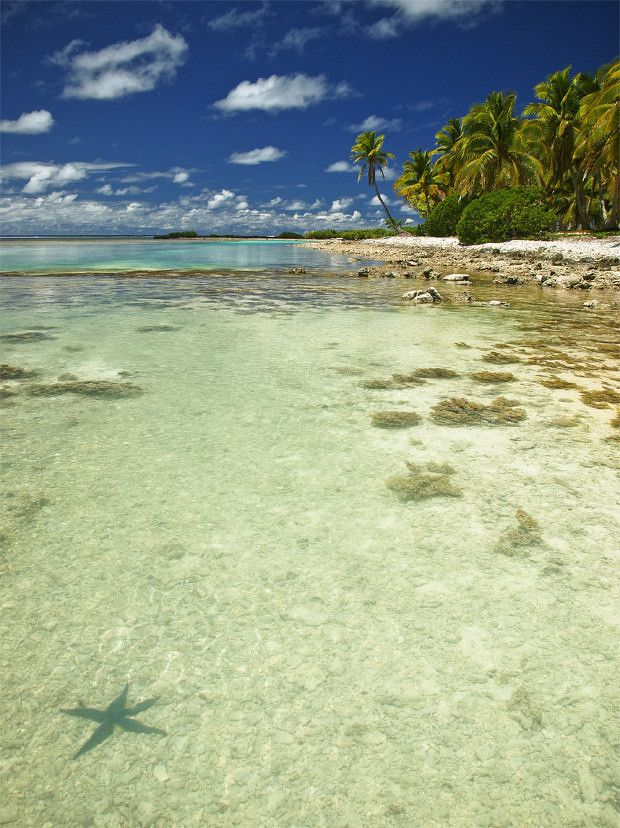 The 25 Best Ideas About Aitutaki Cook Islands On