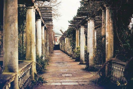 Hampstead Hill Garden