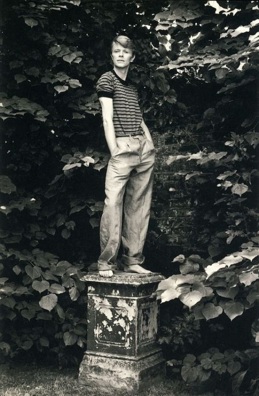 David Bowie by Lord Snowdon (1978)