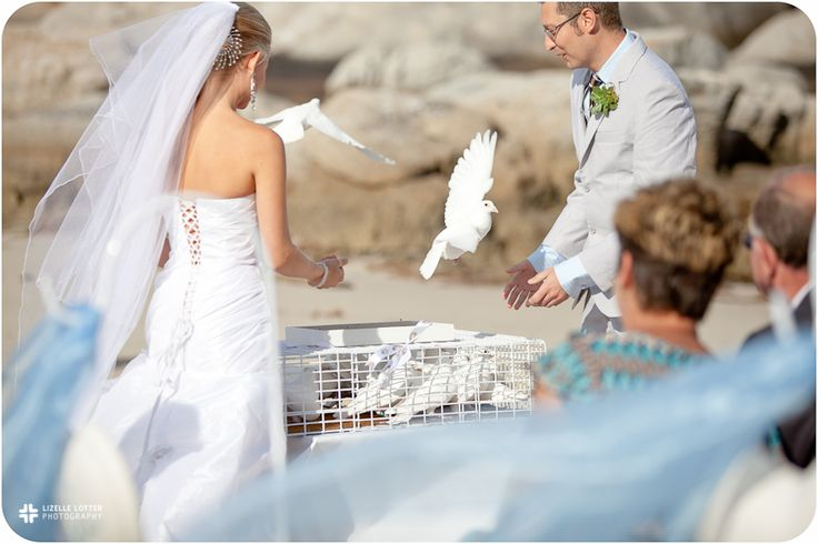 This is a beautiful way to symbolize your unity of love of your new life starting as man and wife. These pure white doves were released, and then wowed the guests and newlyweds as they flew above the calm aqua blue ocean, moving in unison in a spectacular display of patterns before heading off home. A truly magnificent and memorable moment :)
