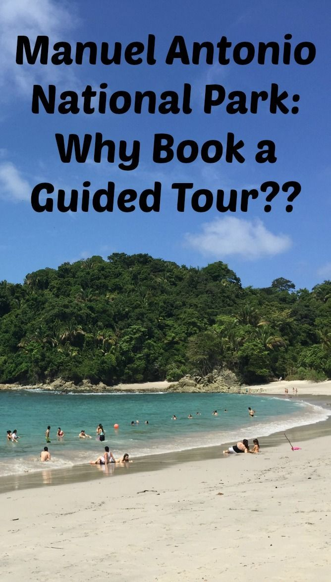 Quepos town and Manuel Antonio National Park are a MUST on any Costa Rica itinerary. The beach at Manuel Antonio is one of the best I've ever seen. Here's why you should be sure to book a guided tour of the national park when you're in the area and what to expect.