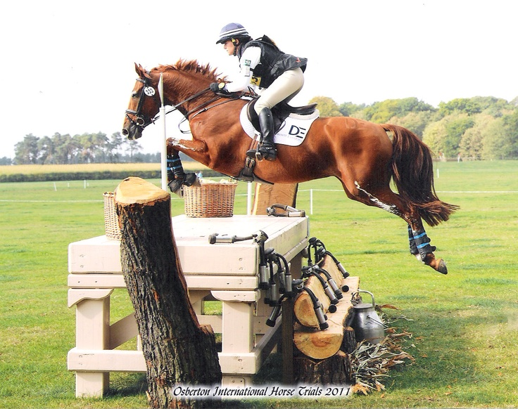 Horses jumping cross country - photo#40