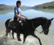 weisheiten aus tibet – Google-Suche