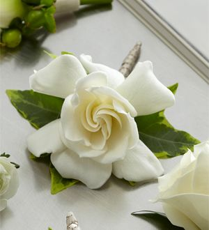 The FTD® Gardenia Boutonniere http://www.damianosflowers.com/product/the-ftd-gardenia-boutonniere/display