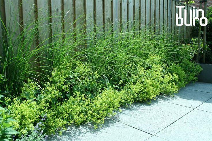 Voorbeeld tuinen | Tuinontwerpen | Tuinfoto's | Het Tuinburo