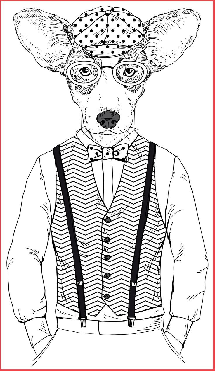 Dogs And Cats Coloring Page