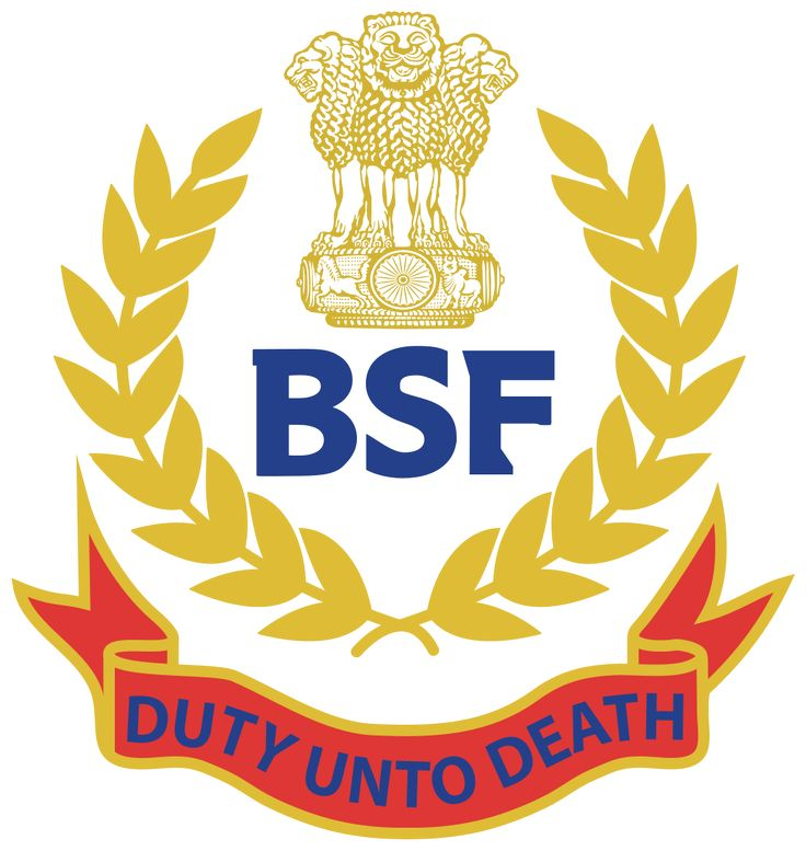 Border Security Force is inviting applications under Border Security Force BSF Recruitment 2016 for the post of 28 Veterinary Assistant Surgeon Vacancies.