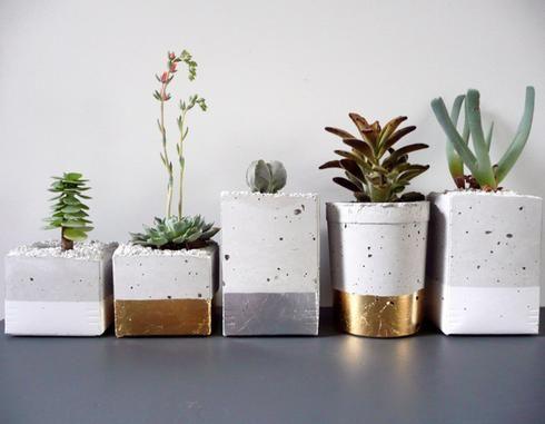 Pots de fleurs en béton