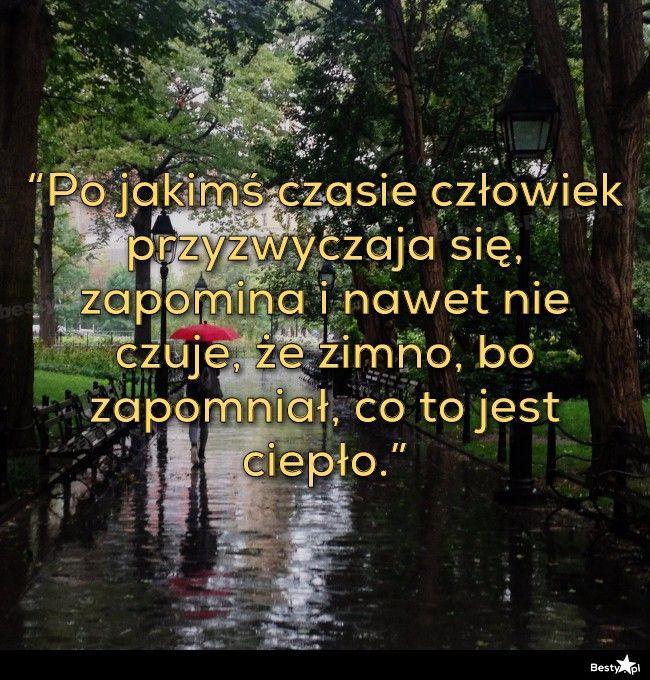 """BESTY.pl - """"Po jakimś czasie człowiek przyzwyczaja się, zapomina i nawet nie czuje, że zimno, bo zapomniał, ..."""