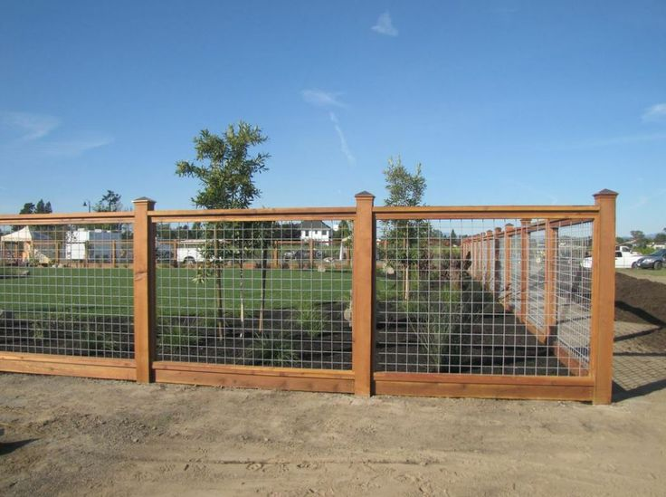 hog wire fence- would want 1/2 height