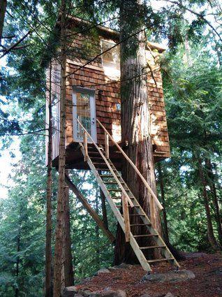 Pender Island Tiny House Treehouse