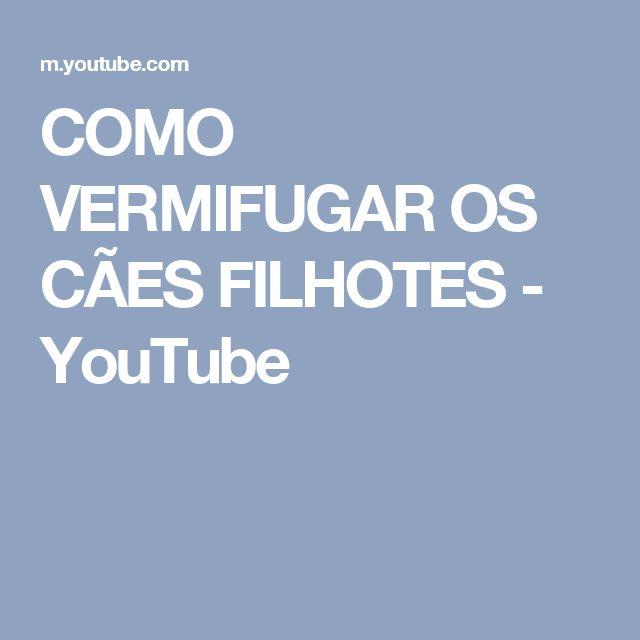 COMO VERMIFUGAR OS CÃES FILHOTES - YouTube