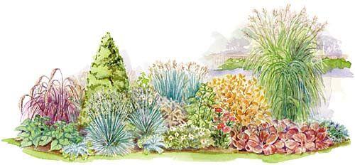 4 season conifer border pinterest gardens raised - Perennial flower bed design plans ...