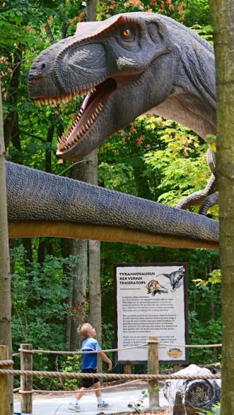 Kings Island Animatronic dinos move and roar, Planet Snoopy delights tykes, and Soak City Waterpark cools summer days at this amusement park north of Cincy in Mason. (513) 754-5700; visitkingsisland.com