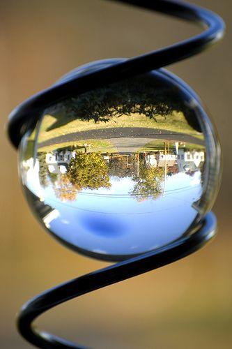 Flip World Bubble
