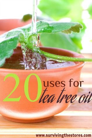 I do love me some tea tree oil. My favorite bathroom and kitchen cleaner is equal parts vinegar and hydrogen peroxide plus several drops of tea tree oil.