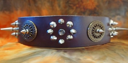 Custom Leather Dog Collar with Spikes & Studs