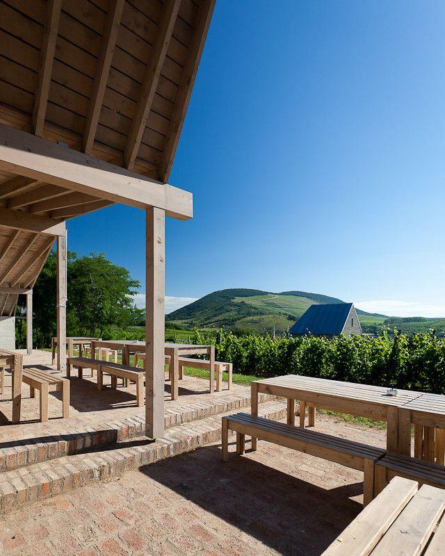 Gallery - Wine Terrace and Spa / Gereben Marián Architects - 6