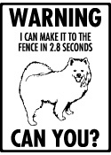 Warning! I can make it to the fence in 2.8 seconds...Can You? American Eskimo Sign