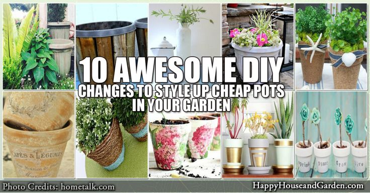 10 Awesome DIY Changes to Style Up Cheap Pots in Your Garden