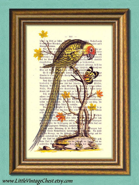 CONVERSATION Parrot And Butterfly Dictionary by littlevintagechest, $7.99