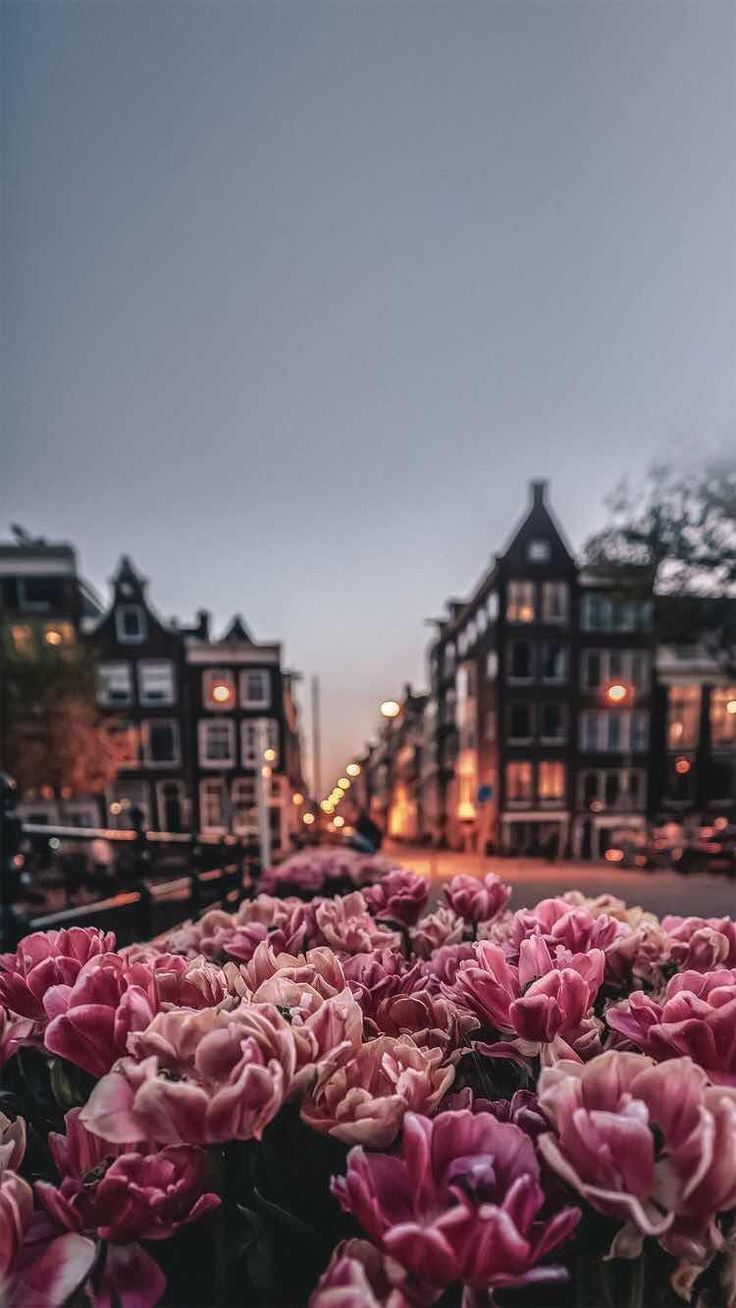 Hintergrundbilder für iPhone und Android: Amsterdam für iPhone und Android