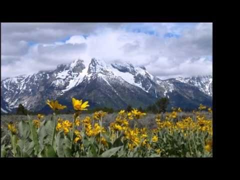 Canon - music by Emily Gallo and Glenn Tucker