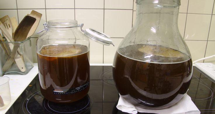 Drink Kombucha Tea for Positive Health Benefits!