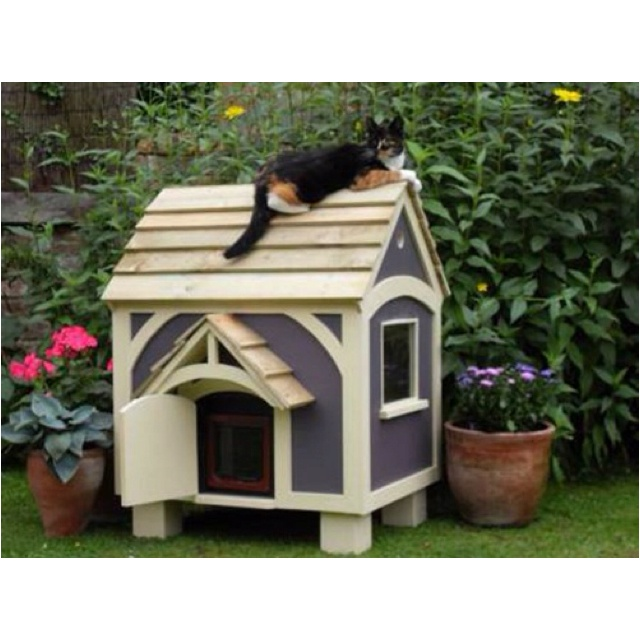 Pet Friendly Flooring Options For Cat And Dog Owners: 12 Best Elmo & Olive Cat Houses And Stuff Images On