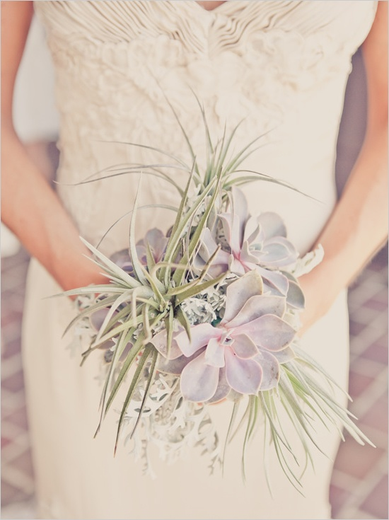 OMC LOVES: Airplant bouquets.