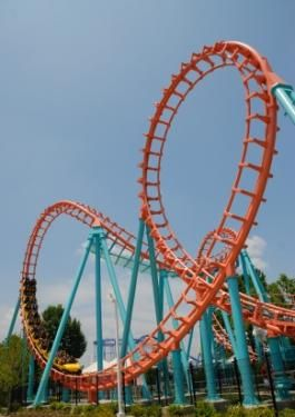 Physics of roller coasters--introduces key physics topics via an exploration of amusement park rides.
