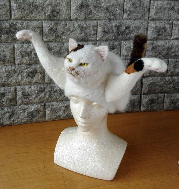 これが本当の 猫かぶり帽 がsnsで話題 作者に聞く 愛猫ロスが作品の原動力に 作品 剥製 三毛猫