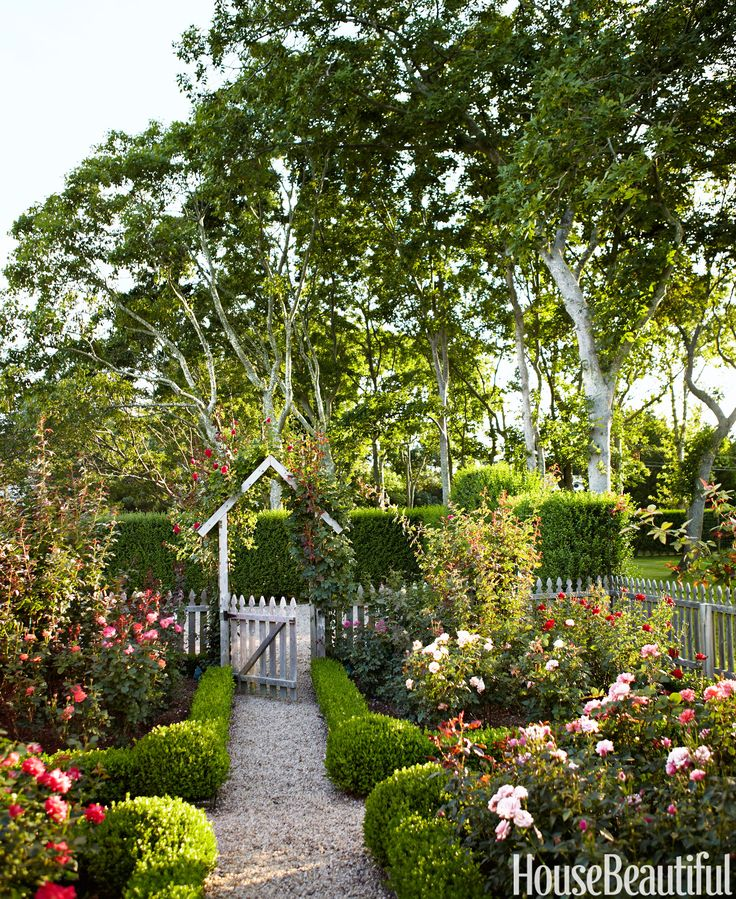 "For a garden outside of her Hamptons cottage, designer Podge Bune chose roses for their scent and didn't worry about color. ""I thought, 'Well, let's just have a riot.' I'm so bored with all white. But be warned. Roses are persnickety. I have to do a little nip and tuck every day.""   - HouseBeautiful.com"