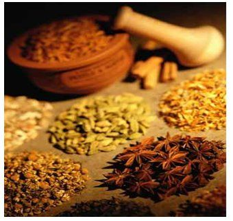 Medical Herbs and Alternative Medicine
